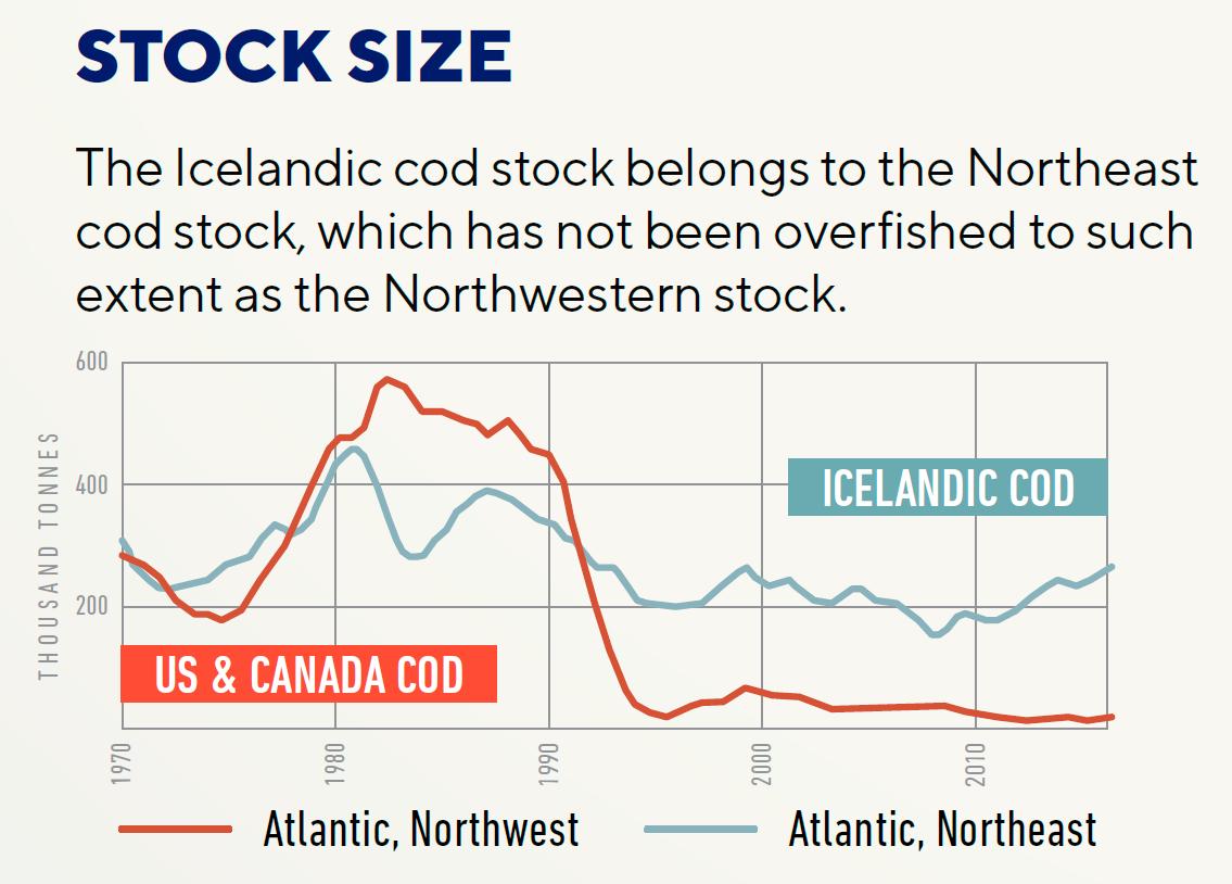 cod-stock